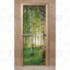 Дверь с фотопечатью F241 фото